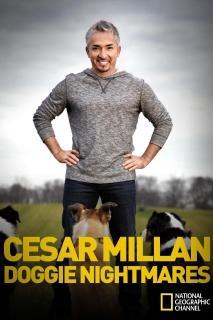 Cesar Millanin hauvahelvetti